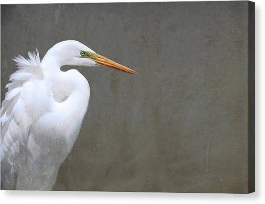 Portrait Of An Egret Rectangle Canvas Print
