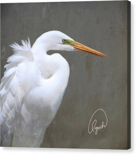 Portrait Of An Egret Signed Canvas Print