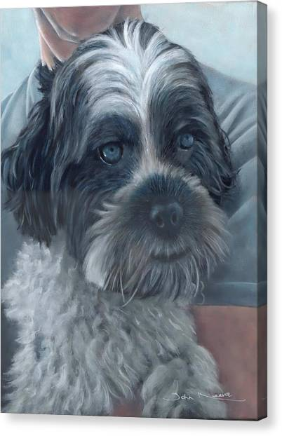 Portrait Of Charley Canvas Print