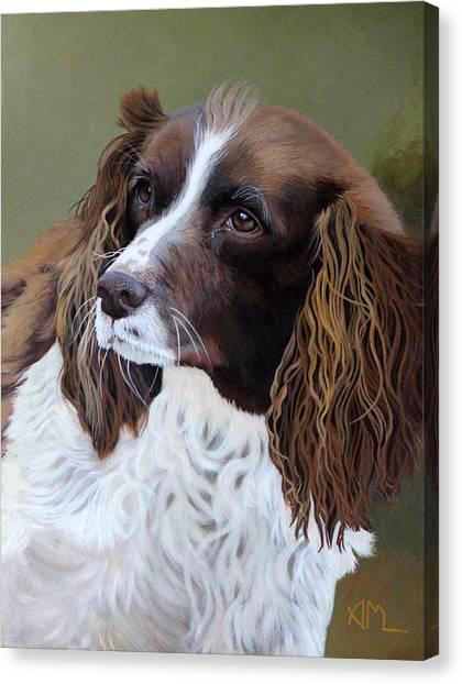 Canvas Print - Portrait Of Jesse - Springer Spaniel by Antonio Marchese