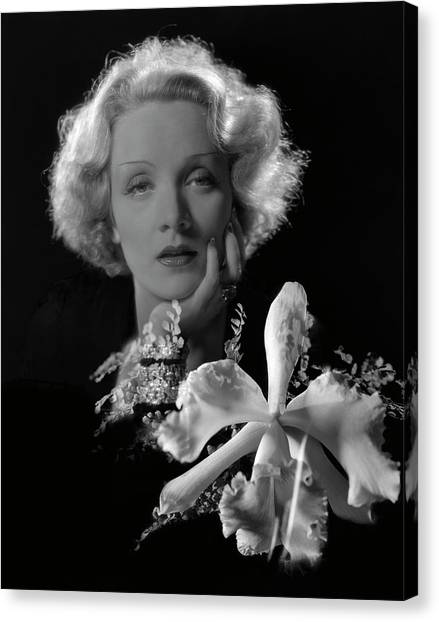 Chin Canvas Print - Portrait Of Marlene Dietrich by Cecil Beaton