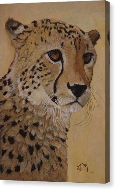 Canvas Print - Portrait Of Murphy - Male Cheetah by Antonio Marchese