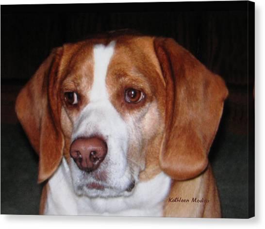 Portrait Of Rusty Canvas Print