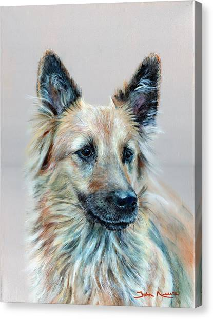 Portrait Of Sasha Canvas Print