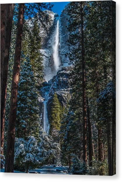 Yosemite Falls Canvas Print - Portrait Of Yosemite Falls by Bill Gallagher