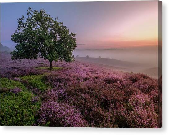 Posbank Canvas Print