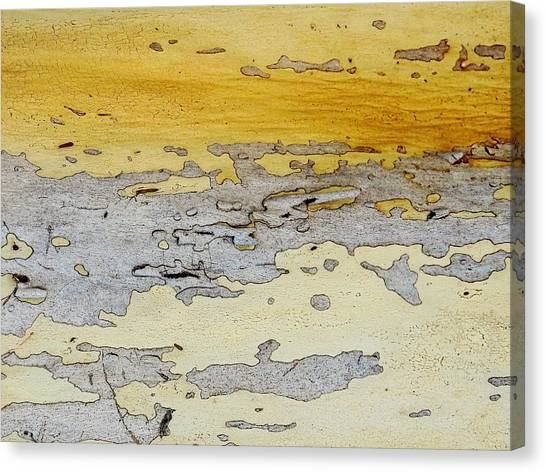 Possum Abstract Landscape 3 Canvas Print