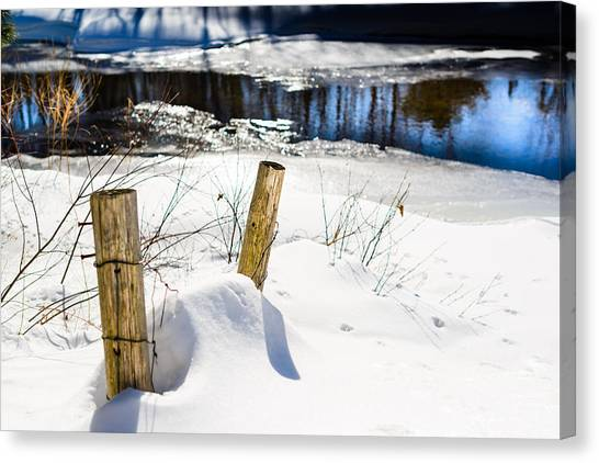 Posts In Winter Canvas Print