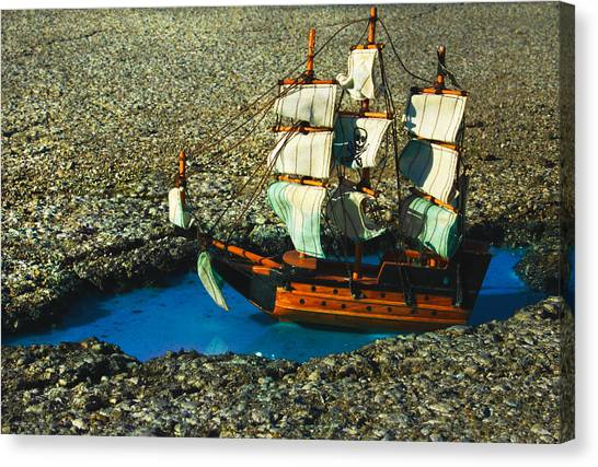 Pothole Pirate Canvas Print