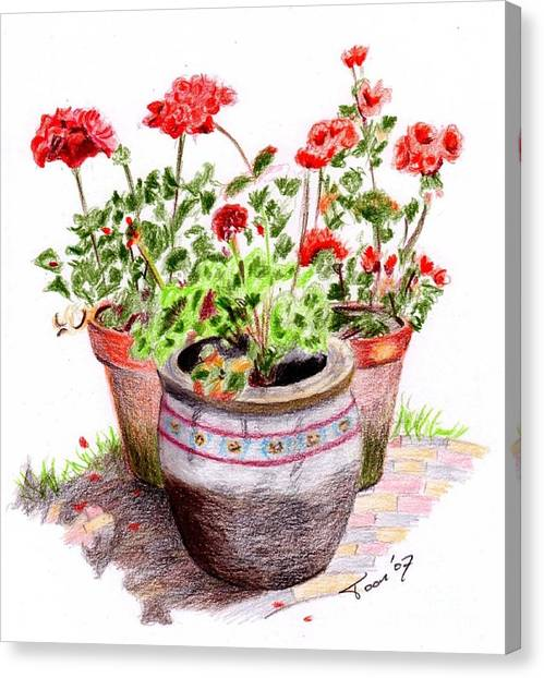 Pots Of Spring Canvas Print