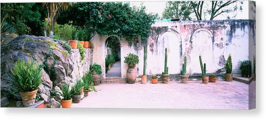 San Miguel De Allende Canvas Print - Potted Plants In Courtyard Of A House by Panoramic Images