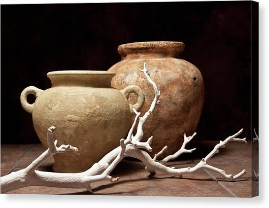 Clay Canvas Print - Pottery With Branch I by Tom Mc Nemar