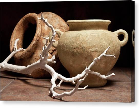 Clay Canvas Print - Pottery With Branch II by Tom Mc Nemar