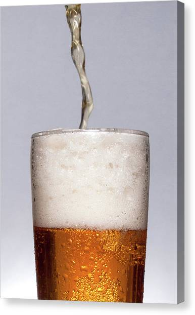 Pouring Beer Canvas Print