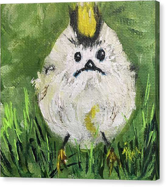 Large Birds Canvas Print - Pouty Panda Bird In The Grass by Roxy Rich