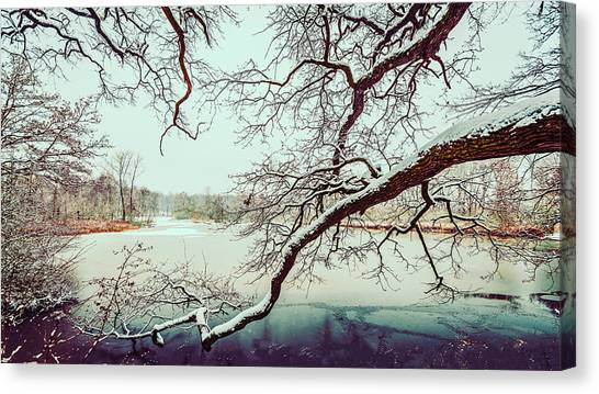 Power Of The Winter Canvas Print