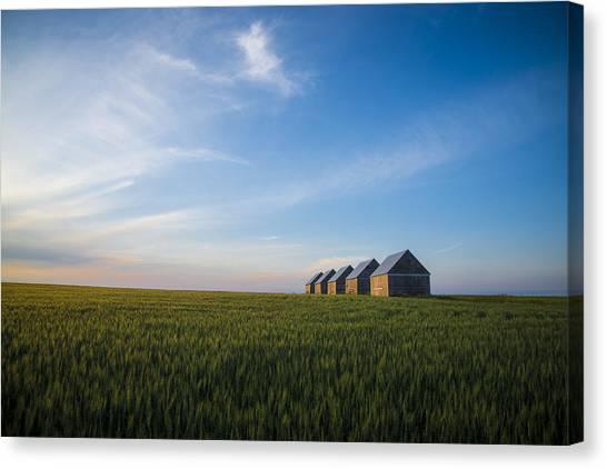 Prairie Sunsets Canvas Print - Prairie Evening by Bill Cubitt