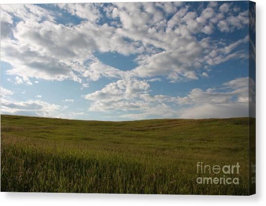 Prairie Field Canvas Print