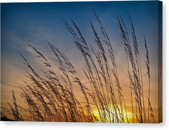 Prairie Sunsets Canvas Print - Prairie Grass Sunset by Steve Gadomski