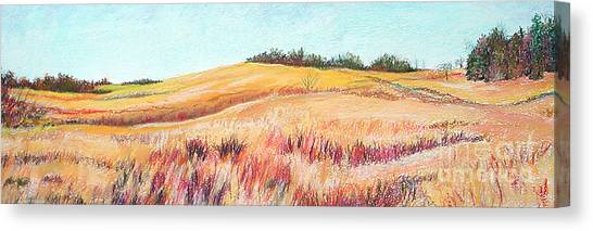 Prairie IIi Canvas Print by Lucinda  Hansen