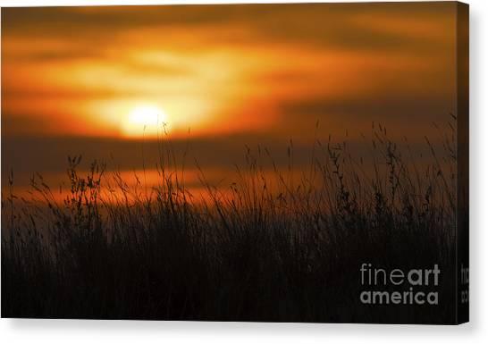 Prairie Sunset Canvas Print - Prairie Like... by Nina Stavlund