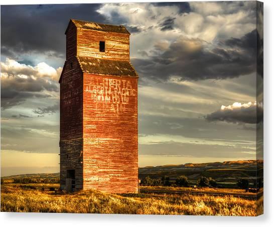 Desolation Canvas Print - Prairie Sentinel by Wayne Sherriff