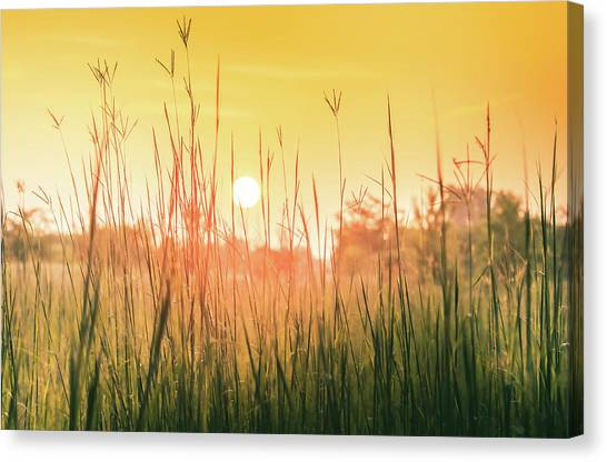 Prairie Sunrises Canvas Print - Prairie Sunrise by Dan Sproul