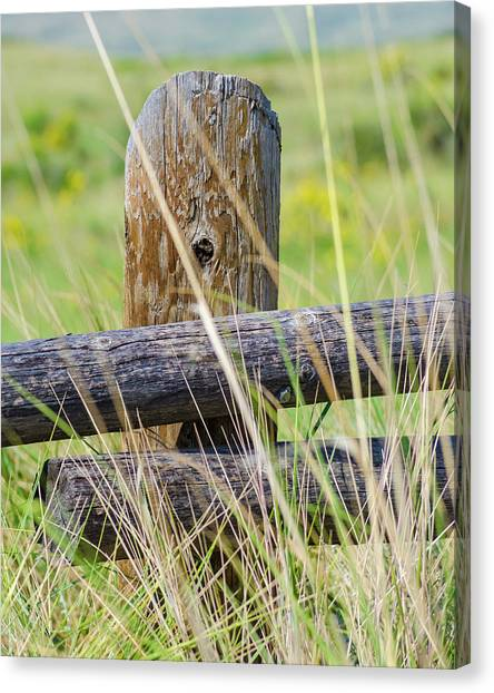 Prairie's Edge Canvas Print