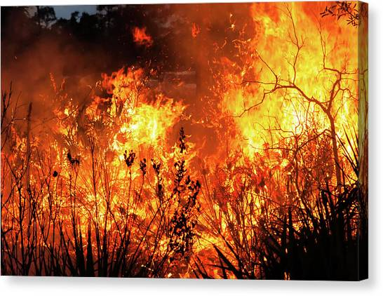 Prescribed Burn Canvas Print
