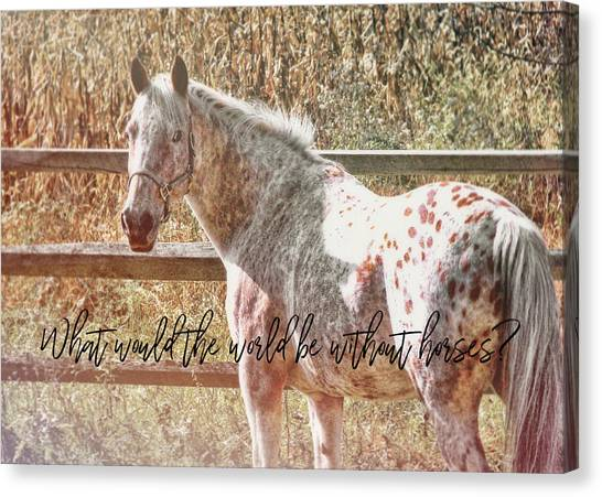 Pretty Appaloosa Quote Canvas Print
