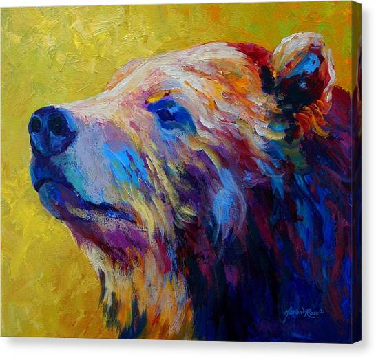 Wildlife Canvas Print - Pretty Boy - Grizzly Bear by Marion Rose