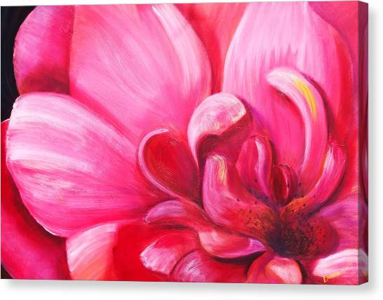 Pretty In Pink Canvas Print by Dana Redfern