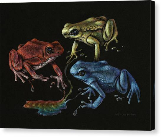 Amazon Rainforest Canvas Print - Primary Poison by Amy S Turner