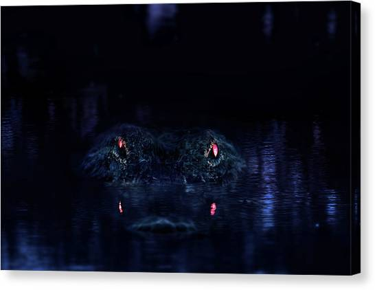 University Of Florida Canvas Print - Primeval by Mark Andrew Thomas