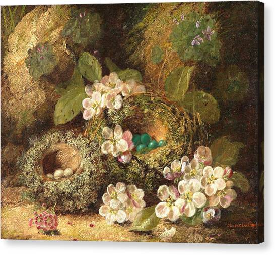 Easter Eggs Canvas Print - Primroses And Bird's Nests On A Mossy Bank by Oliver Clare
