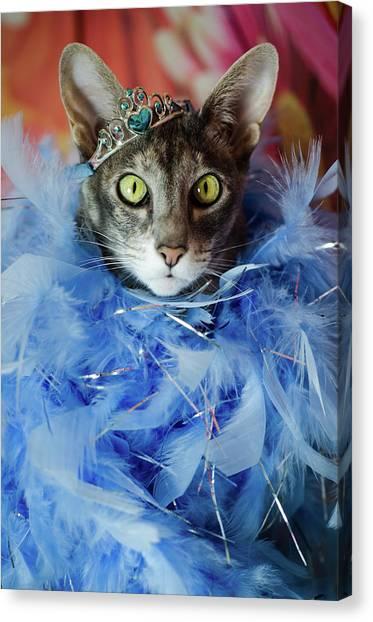 Princess Cat Canvas Print