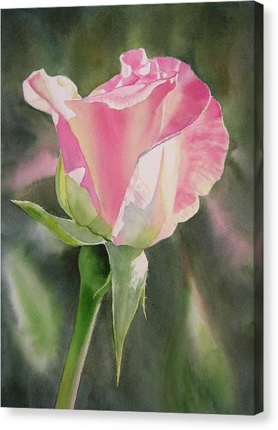 Watercolor Rose Canvas Print - Princess Diana Rose Bud by Sharon Freeman