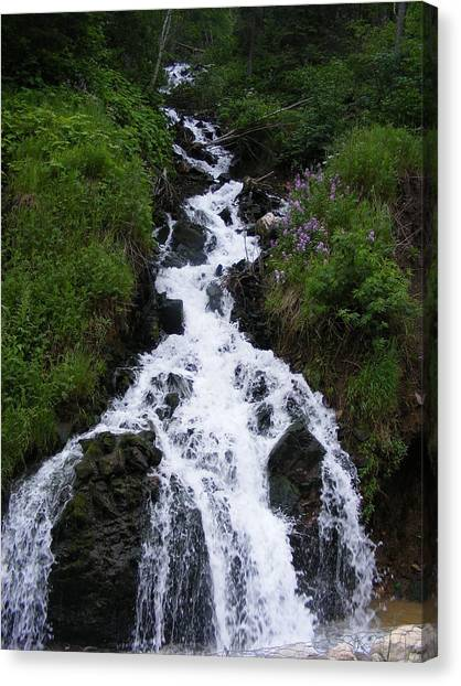 Princess Falls Canvas Print