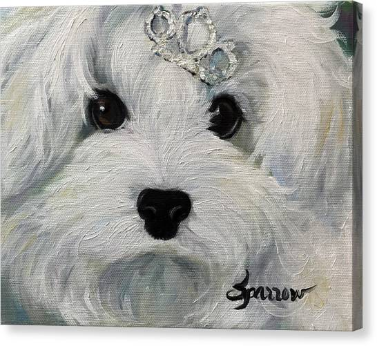White Maltese Canvas Print - Princess by Mary Sparrow