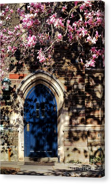 Princeton University Canvas Print - Princeton University Door And Magnolia by Olivier Le Queinec
