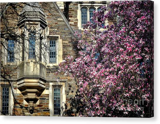 Princeton University Canvas Print - Princeton University Memories by Olivier Le Queinec