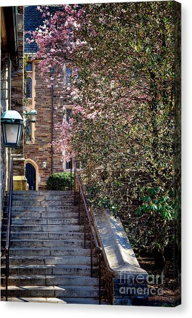 Princeton University Canvas Print - Princeton University Old Stairway by Olivier Le Queinec