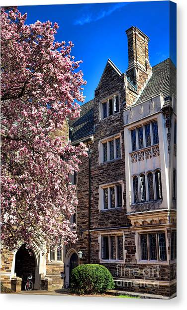 Princeton University Canvas Print - Princeton University Pyne Hall Magnolia  by Olivier Le Queinec