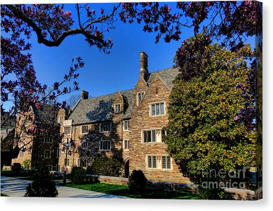 Princeton University Canvas Print - Princeton University Pyne Hall And Trees by Olivier Le Queinec