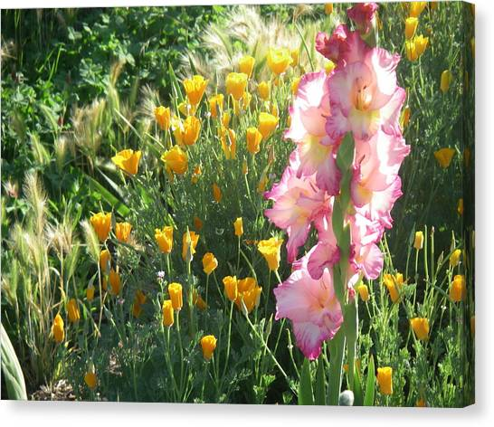 Priscilla With Poppies Canvas Print