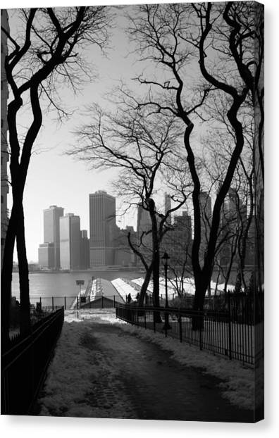 Promenade Trees Canvas Print