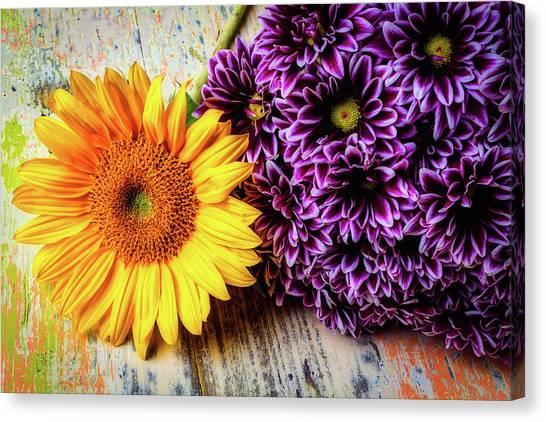 Pom-pom Canvas Print - Proms With Sunflower by Garry Gay