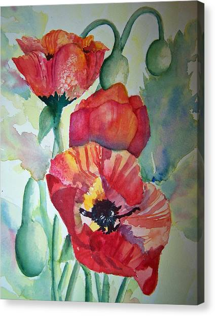 Proud Poppies Canvas Print
