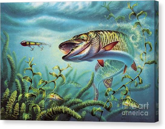 Angling Canvas Print - Provoked Musky by JQ Licensing