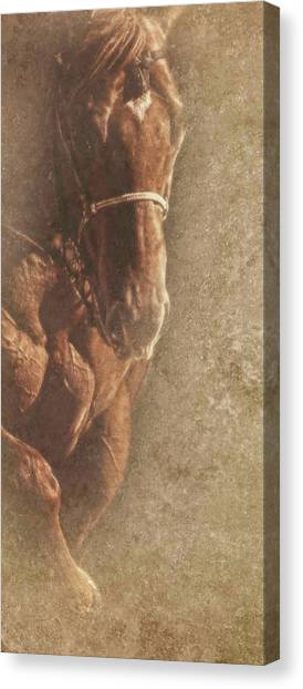 Prowess And Power Canvas Print